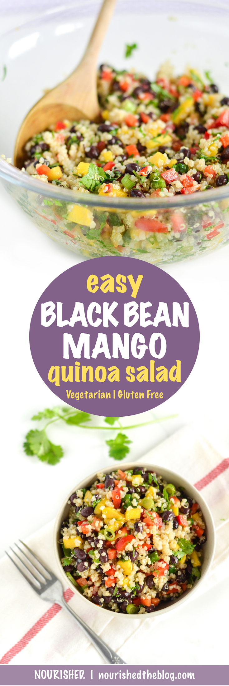 Easy Black Bean Mango Quinoa Salad   recipe   gluten free, vegan   quinoa salad with zesty lime dressing   easy quinoa recipe  
