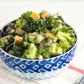 Easy Vegetarian Broccoli Salad with Cheddar Cheese | www.nourishedtheblog.com | feature image