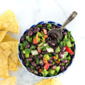 Healthy Black Bean Salsa Dip