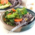 peanut-soba-noodle-bowl-with-veggies-feature-image